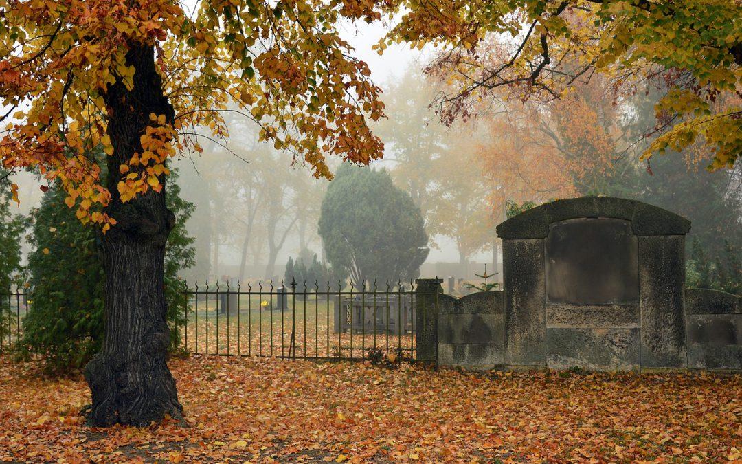 Czas refleksji i zadumy – z wizytą na Cmentarzu Tynieckim w Kaliszu